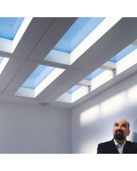 CoeLux LS MATTE встраиваемый светильник в подвесной потолок